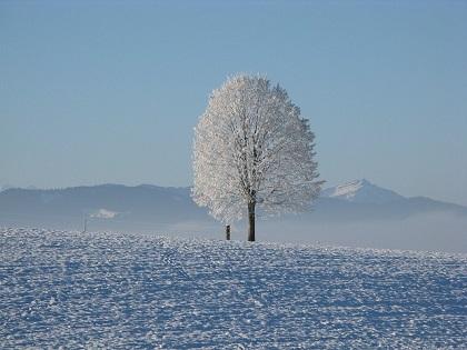 寒冷地や雪国に引越しをするとき...